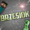 Brz3s1oK